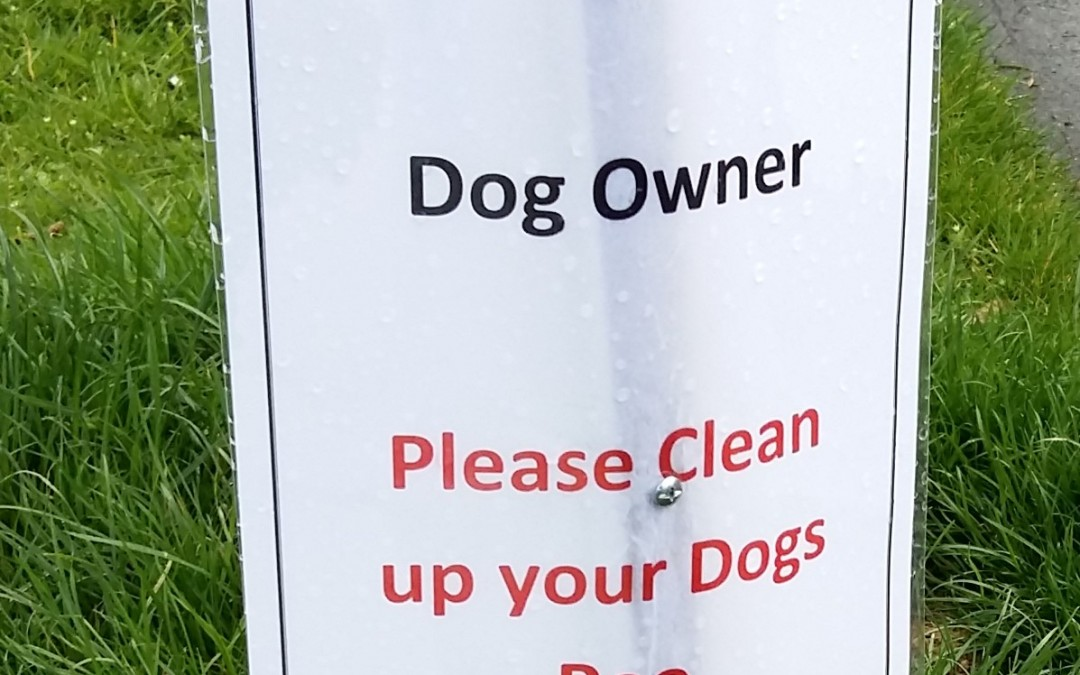 Dogs soiling footpaths is an ongoing problem