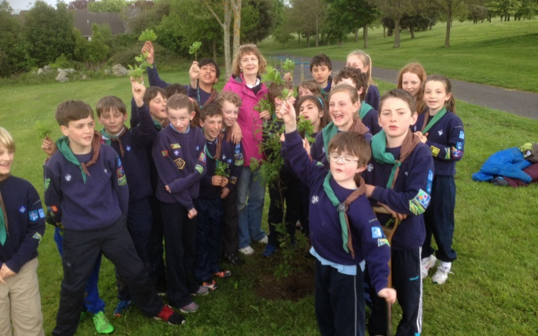 Scouts make 200-300 hundred year investment in Mount Merrion