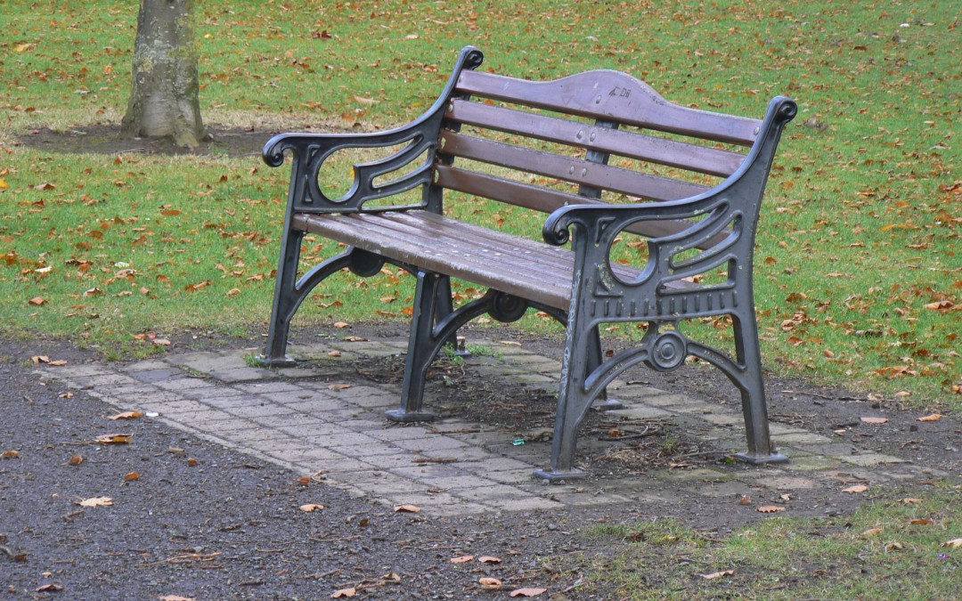 Sponsor a bench in Deerpark!