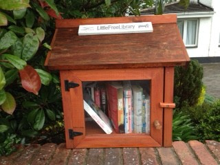 Little Library on The Rise