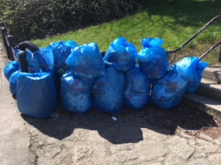 Mount Merrion Annual Clean Up