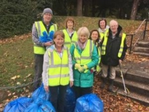 Mount Merrion Clean Up Day