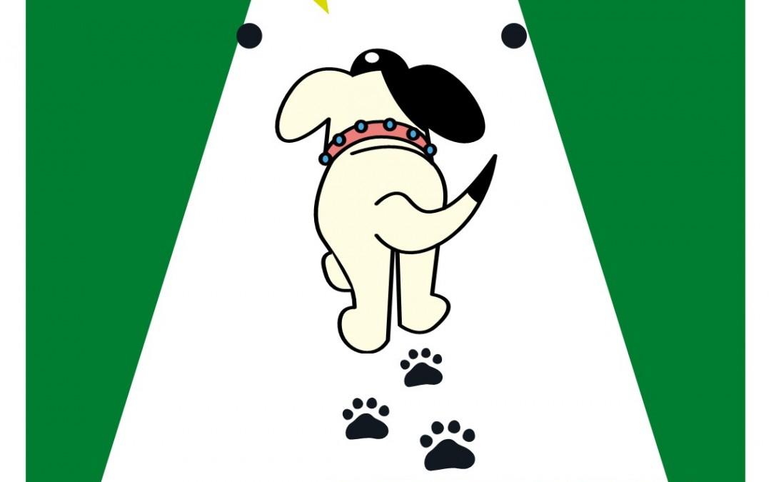 Dog Fouling – dlr €150 fine