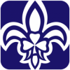 25th Dublin Scouts Mount Merrion Logo