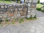 img_20200517_park-entrance-wall-weeds-_deerpark-rd-north-ave__