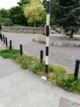 img_20200517_park-entrance-weeds-deerpark-north-ave