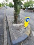 Traffic calming island Trees Road Lower