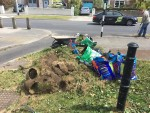 Grass Verges - Glenabbey Road/ South Avenue junction
