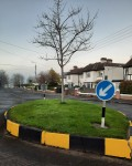 Freshly painted traffic calming island on Sycamore Road Dec-2020