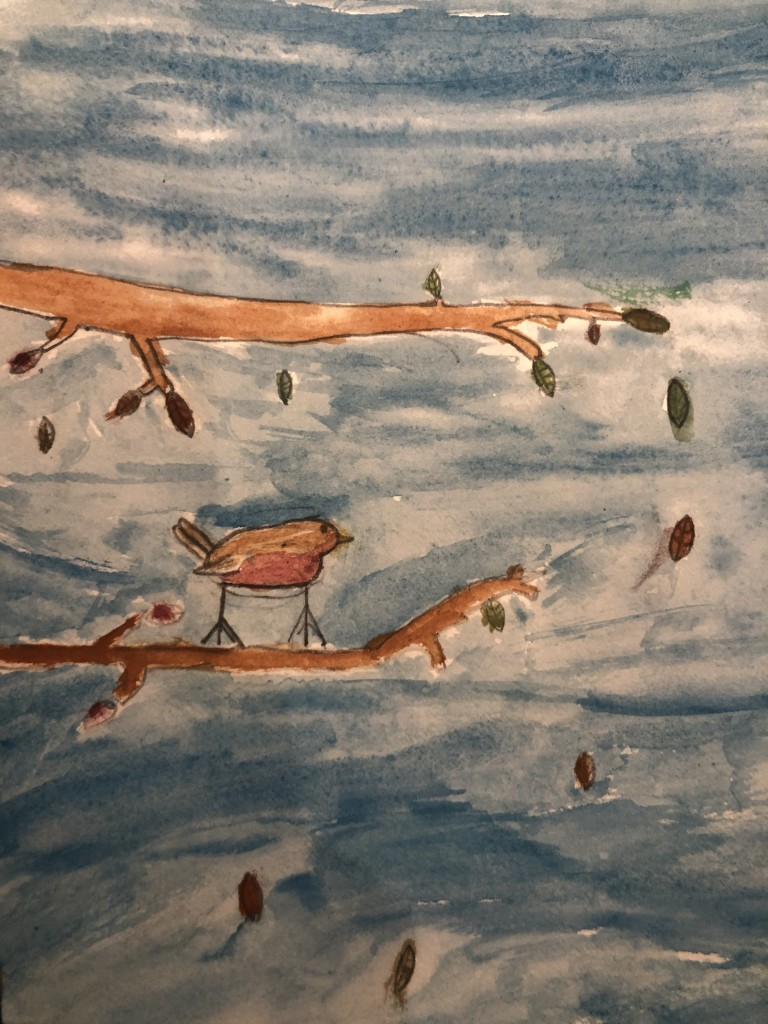 by Clara Daly (age 9) 'Robin in Deerpark' 'I saw a robin and it landed on a branch I thought it looked very pretty
