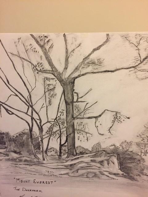 """Mount Everest, The Deerpark"" by Vincent McArdle, Cedarmount Road"