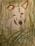 """Dog In The Grass"" by Maria Daly (age 14)"
