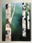 By Niamh Hughes. inspired by the silver birches near the pedestrian crossing on South Avenue, from the Church to Deerpark.