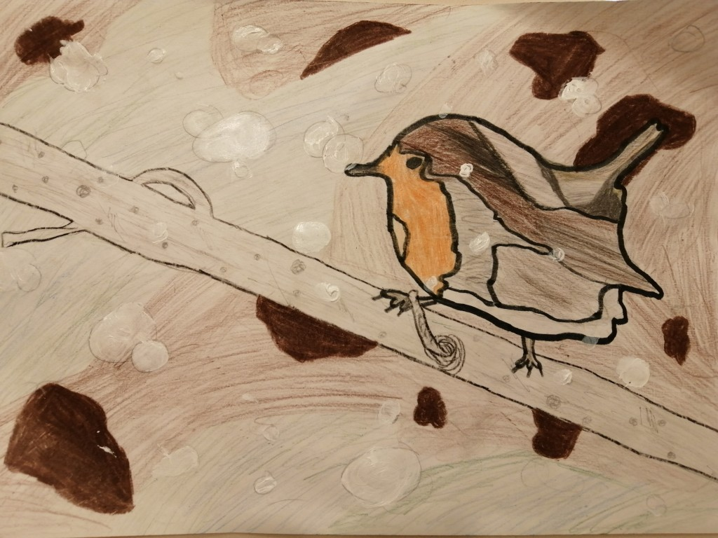 """Robin in the Snow"" by Tom Bracken (age 11)"