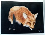 Fox by Eileen Quinn, over 65 category