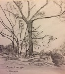 """""""Mount Everest, The Deerpark"""" by Vincent McArdle, Cedarmount Road. Over 65 years"""