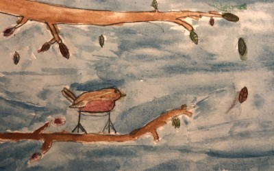 'Robin in Deerpark' by Clara Daly (age 9)