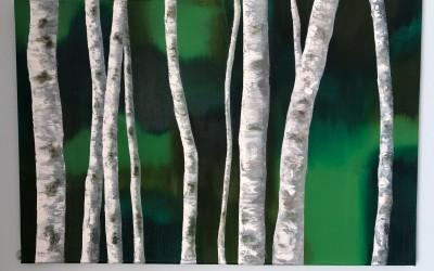 'Silver Birches 1' by  Niamh Hughes (19-64 yrs)