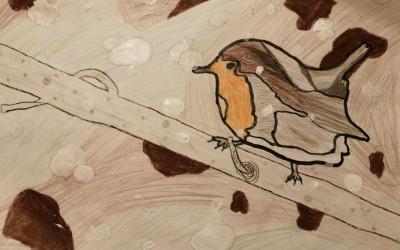 'Robin in the Snow' by Tom Bracken (age 11)