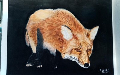 'Fox' by Eileen Quinn (65+)