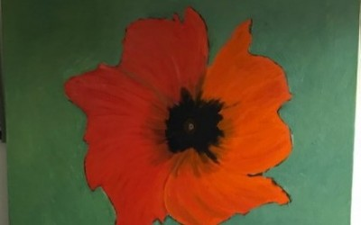"""'Orange Poppy' on green background"""" by Terence Sweeny (65+)"""