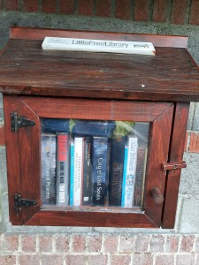 The Free Little Library - New Perspex Door