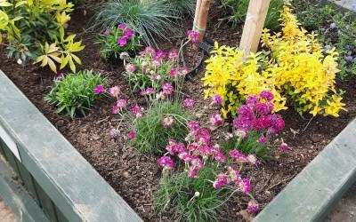MMRA Community Gardening