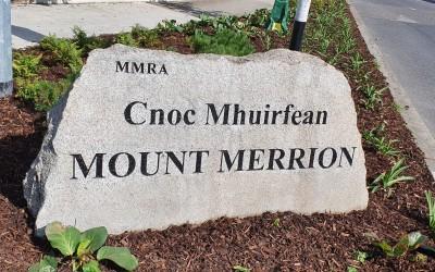 Summer 2021 in Mount Merrion